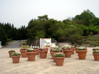 20120508備北丘陵公園01