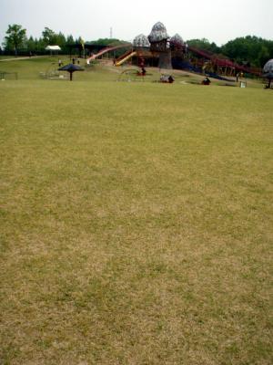 20120508備北丘陵公園07