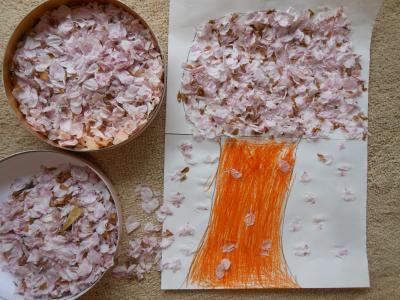 2013 03 31 桜