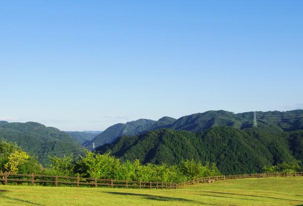 西山高原2012.08 012