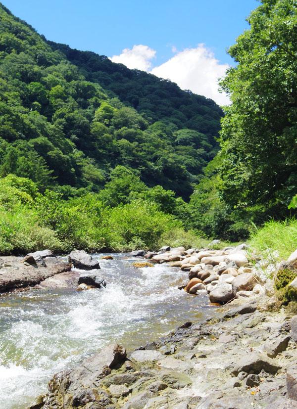 西山高原2012.08 004
