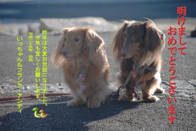 image_20130102174748.jpg