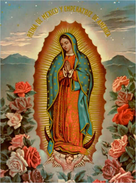 guadalupe3-6 479x640