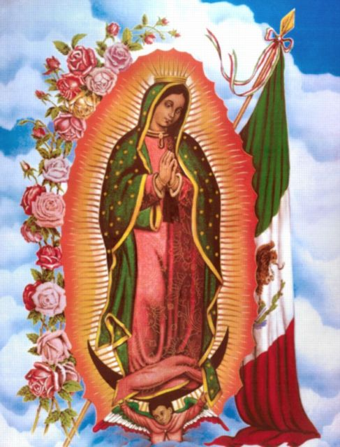guadalupe-4 487x640