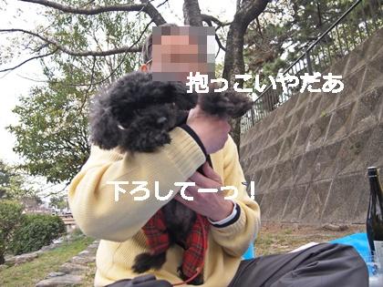 P1010794.jpg