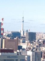 20120629005