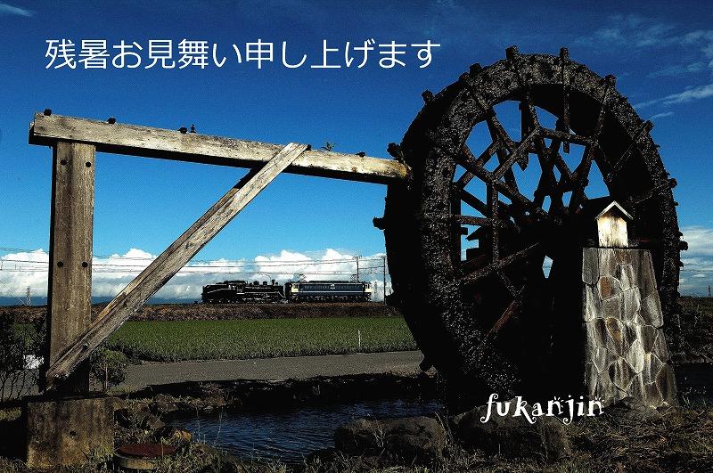 DSC_0038のコピー_edited-1