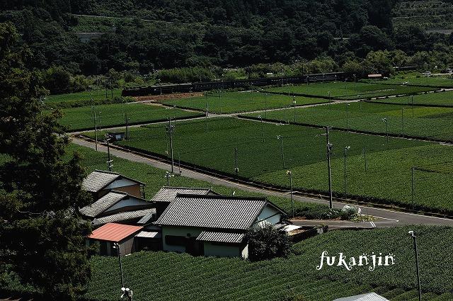 大井川鐵道201208251