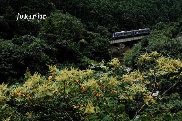 関西本線非電化区20120902  230D