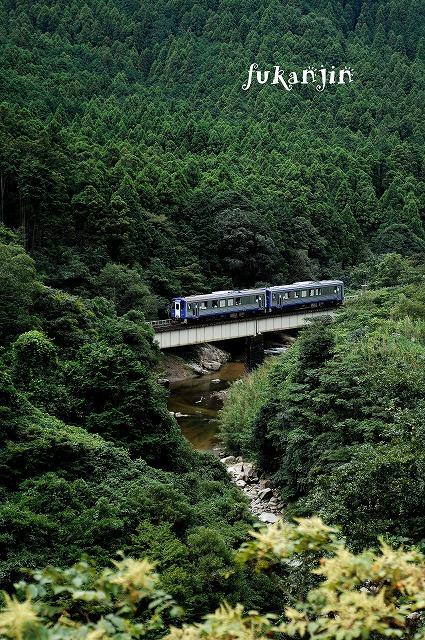 関西本線非電化区20120902  237D