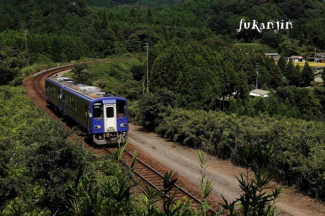 関西本線非電化区20120902  241D
