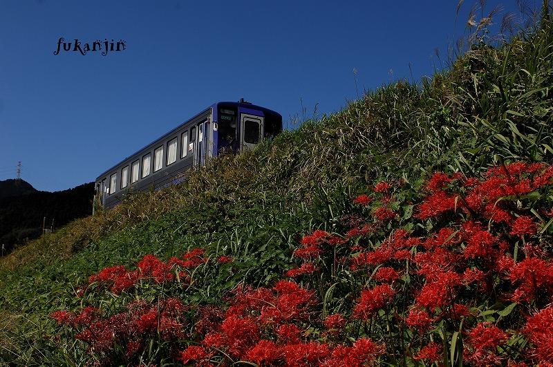 関西本線 1