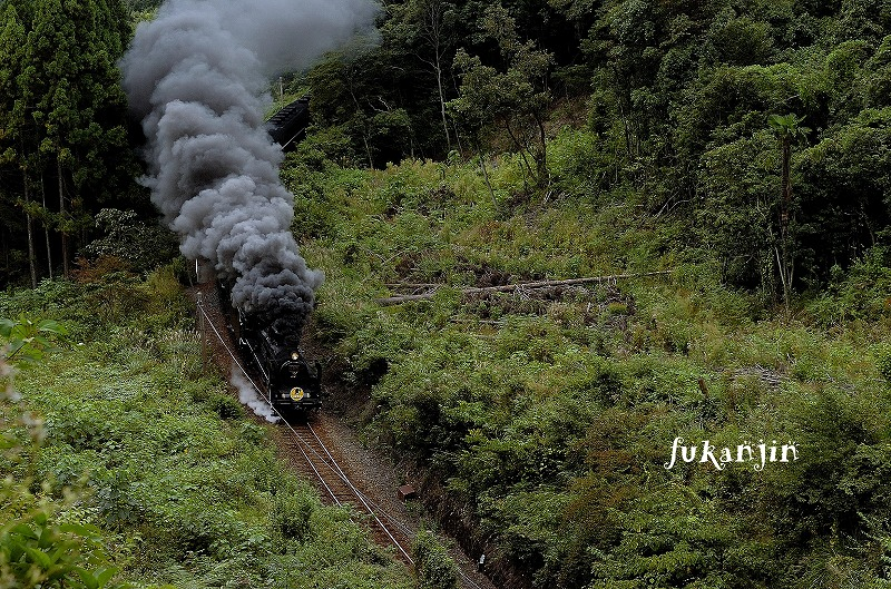 やまぐち号重連二反田伐採地俯瞰 (2)