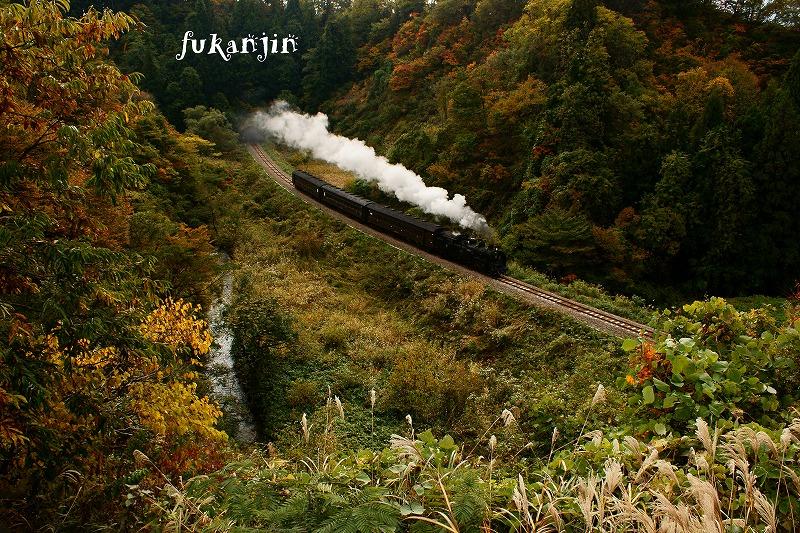 飯山線SL信濃川ロマン号試運転  (6)