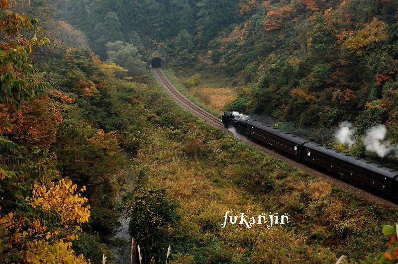 飯山線SL信濃川ロマン号試運転  (11)