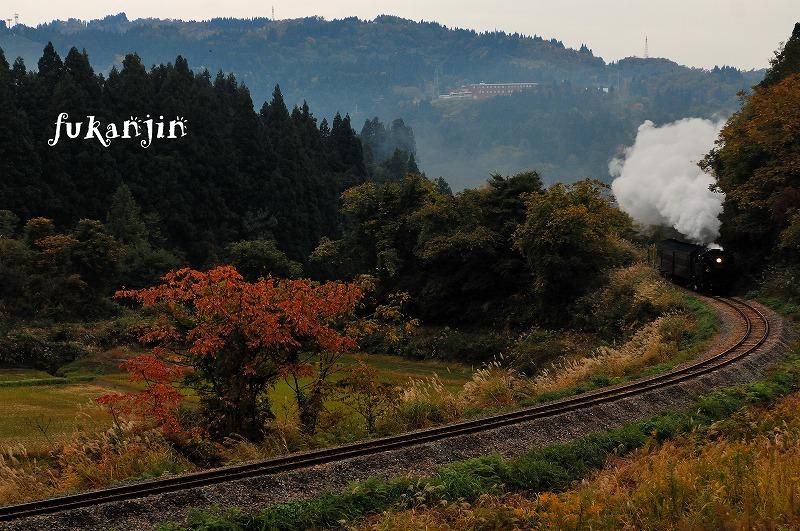 飯山線SL信濃川ロマン号試運転  (8)