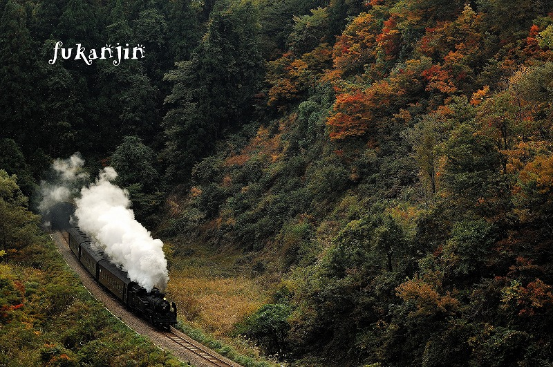 飯山線SL信濃川ロマン号試運転  (16)