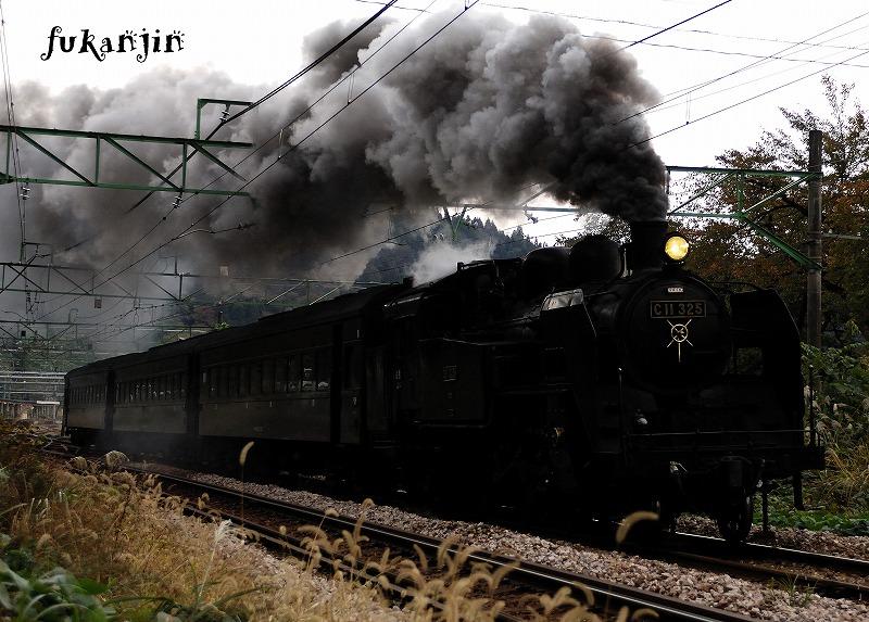 飯山線SL信濃川ロマン号試運転  (14)