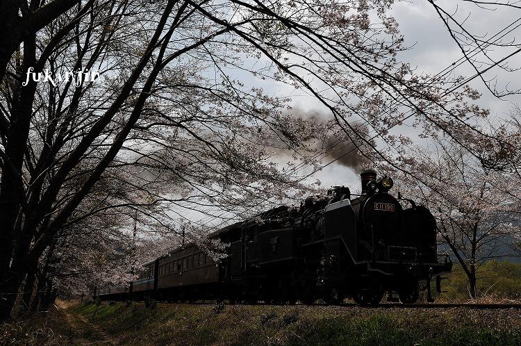 大井川鉄道駿河徳山 (1)のコピー