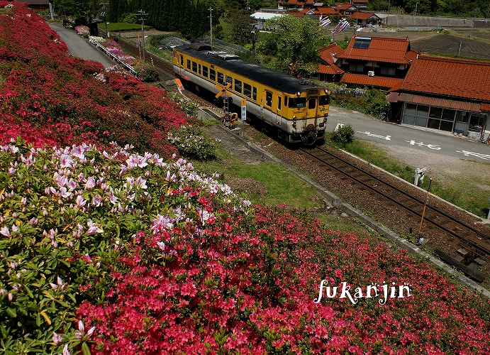 青野山駅付近 11