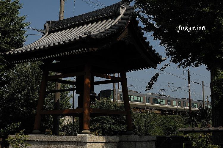 虎姫円融寺 8