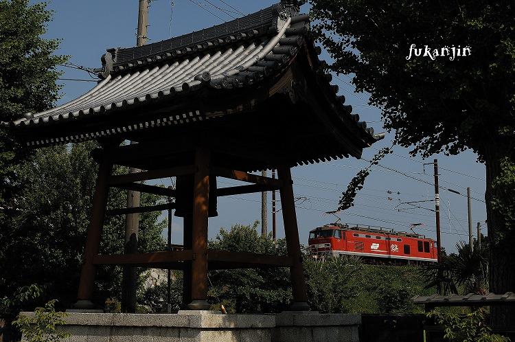虎姫円融寺 2