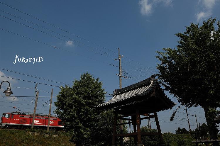 虎姫円融寺 1