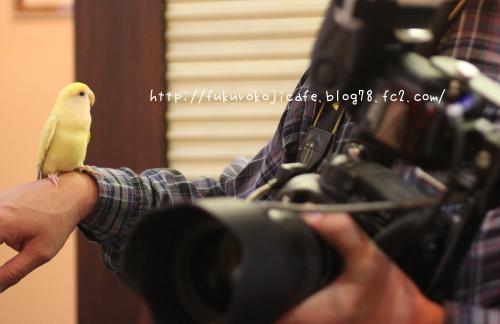 カメラマンさん2
