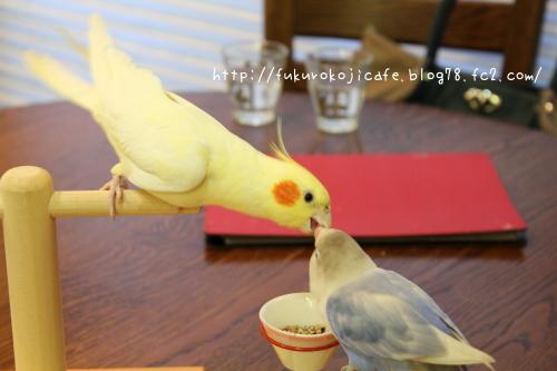 レモン&りあ