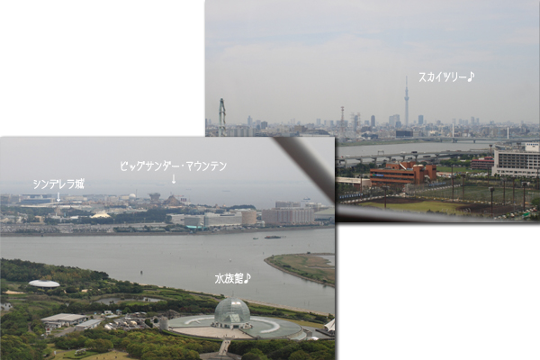 20120609-18.jpg