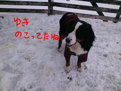 fc2_2013-11-30_16-41-45-887.jpg