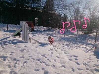 fc2_2013-12-16_18-41-18-191.jpg