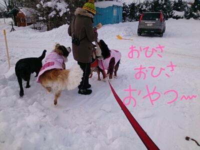 fc2_2014-01-21_16-47-34-686.jpg