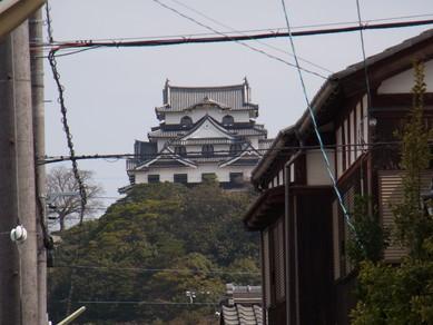 20130323_hiko_11.jpg