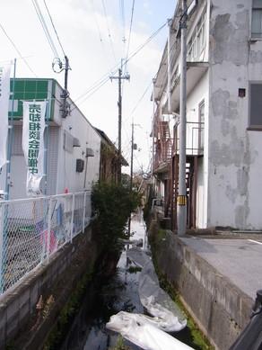 20130323_hiko_2.jpg