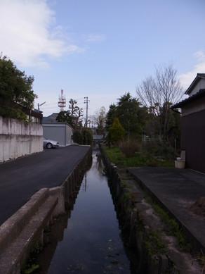 20130323_hiko_5.jpg