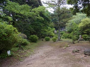 20130623_fukuti_2.jpg