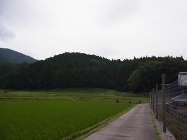 20130623_kurokawa_1.jpg