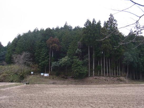 20131215_14.jpg