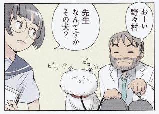 野々村・クマ先生・毛玉