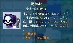 130310_200409.jpg