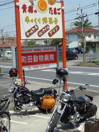 2012_0428戸田別館 0031