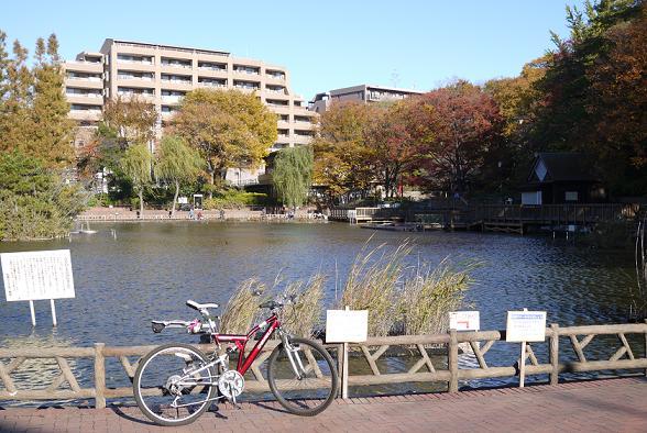 2012_1127戸田別館 0009