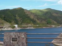 ダム湖の新緑