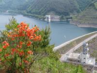 柳沢尾根公園からのダム湖