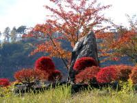 資料館周辺の紅葉