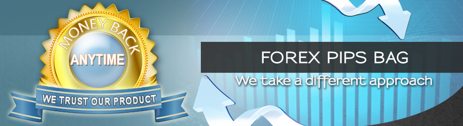 Forex 1 pip broker