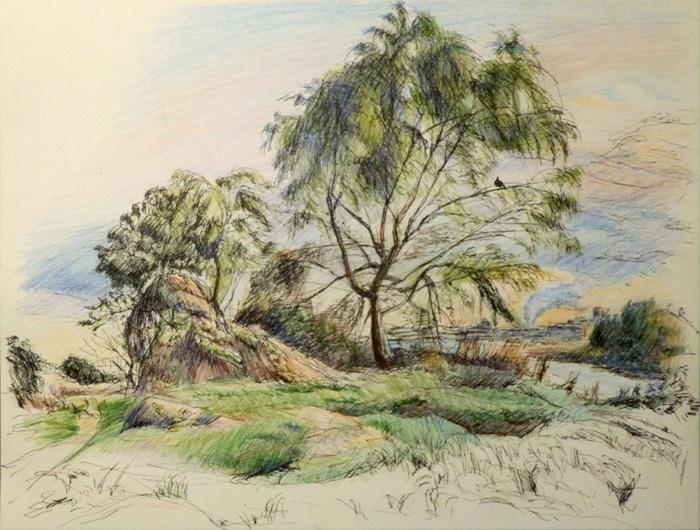 川べりの木立
