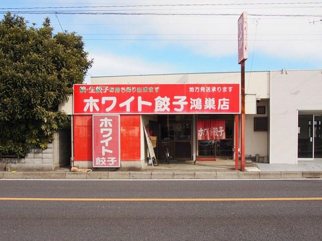 ホワイト餃子 (10)