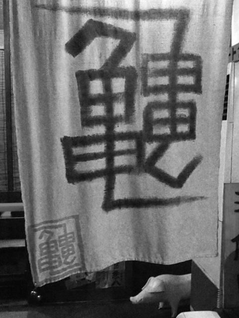 亀力 (15)